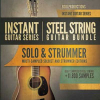 8Dio Steel String Guitar Bundle