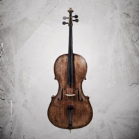 Agitato Grandiose Ensemble Cellos