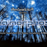 Anamorphosis for Sonic Academy ANA 2