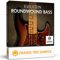 Evolution Roundwound Bass