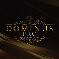 Fluffy Audio Dominus Choir Pro [12 DVD]