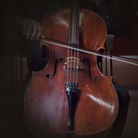 Native Instruments Stradivari Cello v.1.0