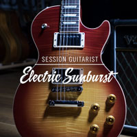 Session Guitarist Electric Sunburst