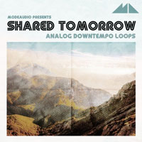 Shared Tomorrow Analog Downtempo Loops